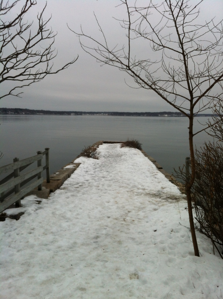 Back down in Portland, I took a nice, snowy hike around Mackworth Island in Falmouth. Great Diamond Island is in the distance.
