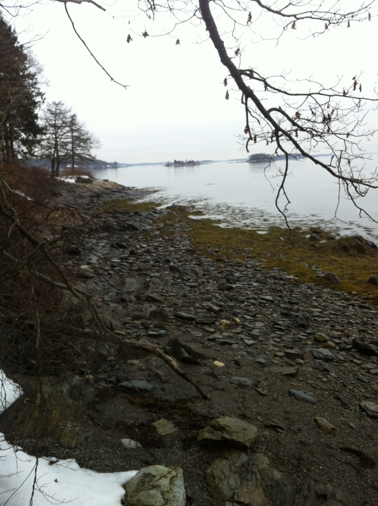 Along the shores of Mackworth Island looking out into Casco Bay.